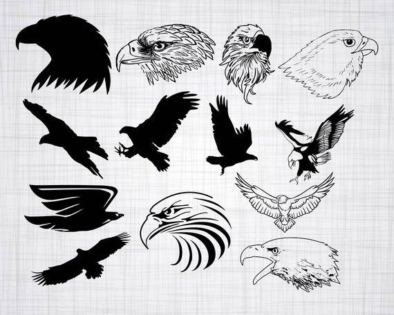 Svg bundle cut files. Eagle clipart file