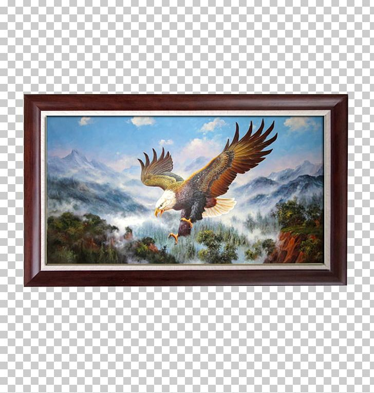 Eagle clipart frame. Painting png animals art