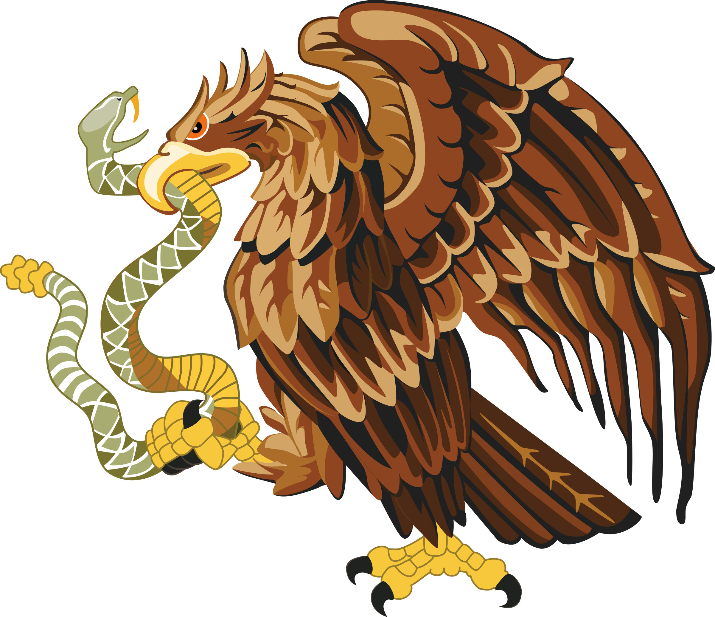 Golden eagle with big. Snake clipart brown snake