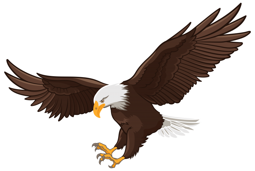 Eagle clipart majestic. Png free images toppng