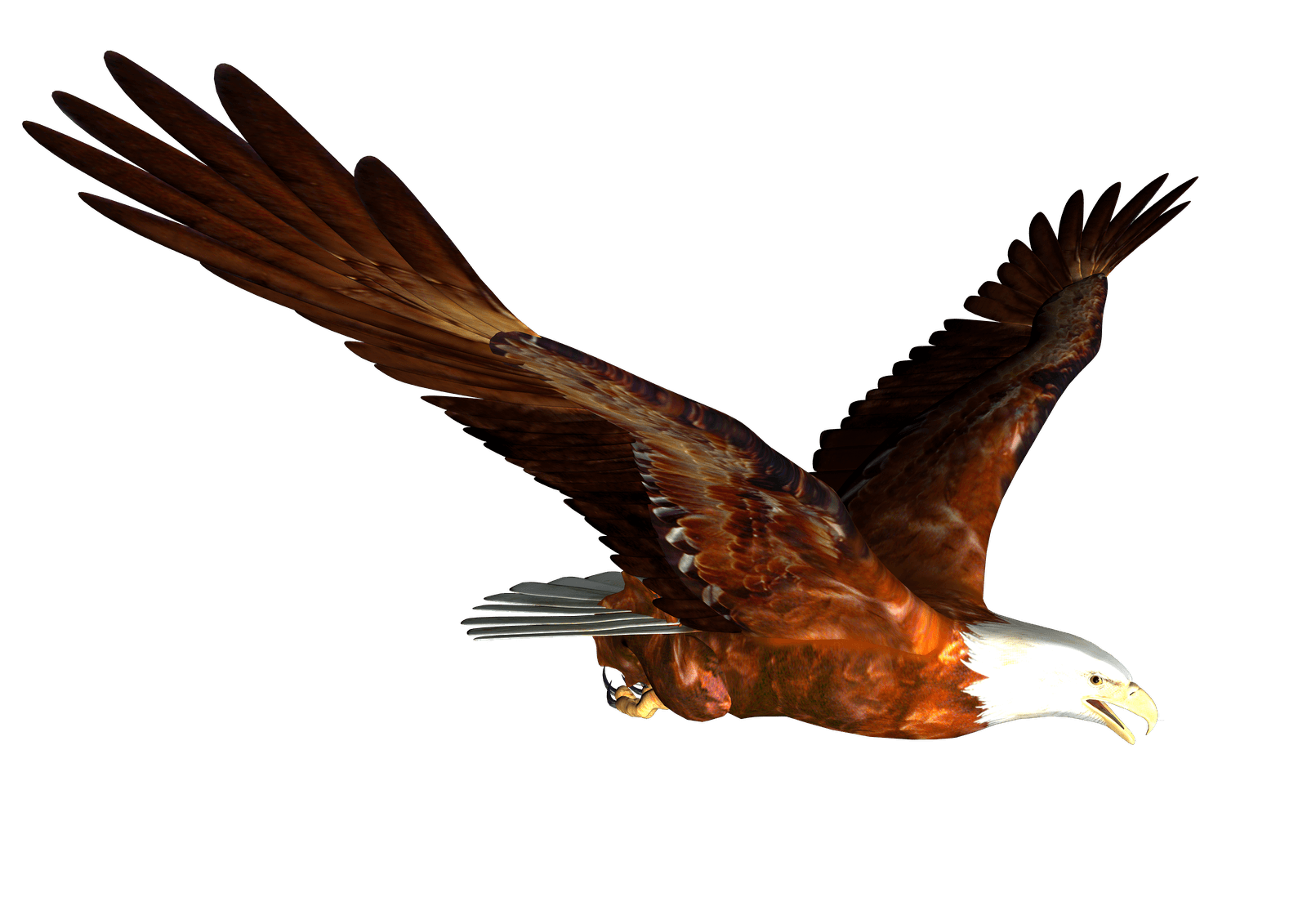 Animated bald flying png. Eagle clipart majestic