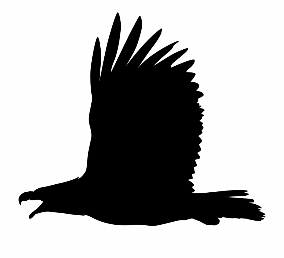 Eagle clipart name. Free png images download
