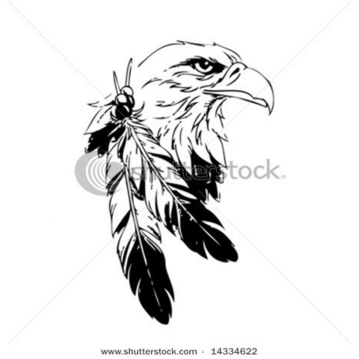 Eagle clipart name. Sketches please your picture