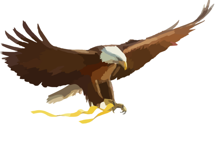 Eagle clipart passport. American page of bclipart