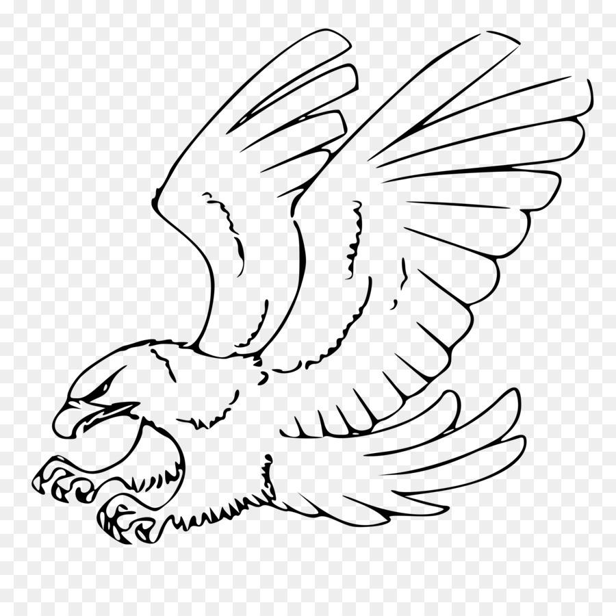 Black line background bird. Eagle clipart pencil