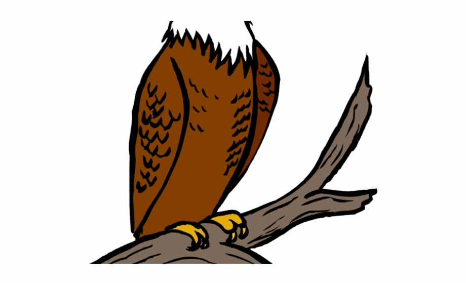 Eagle clipart perched. Bald free png images