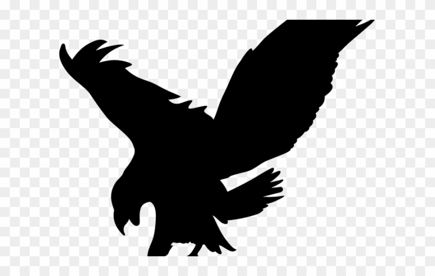 Eagle clipart prey. Bird of transparent background