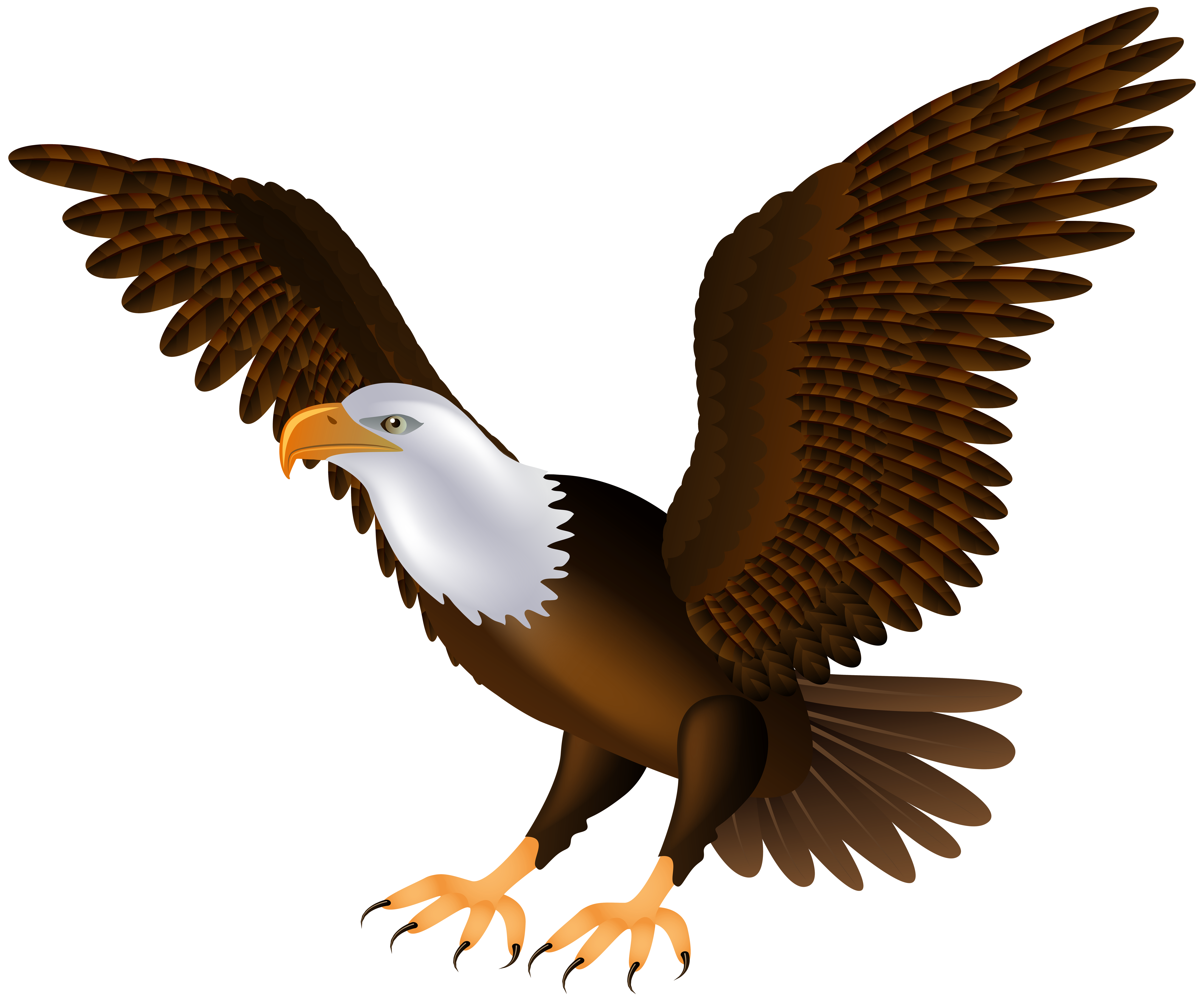 To free images . Eagle clipart printable