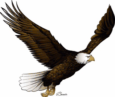 Eagle clipart printable. Free images download clip