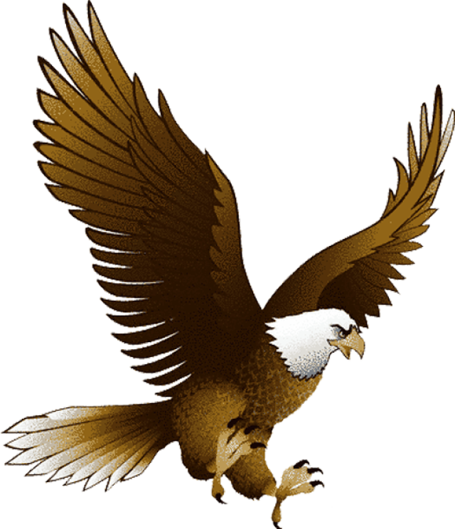 collection of bald. Eagles clipart dead eagle