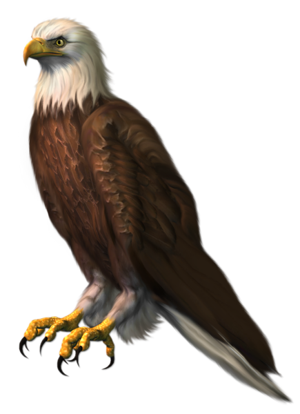 Free cliparts background download. Eagle clipart standing