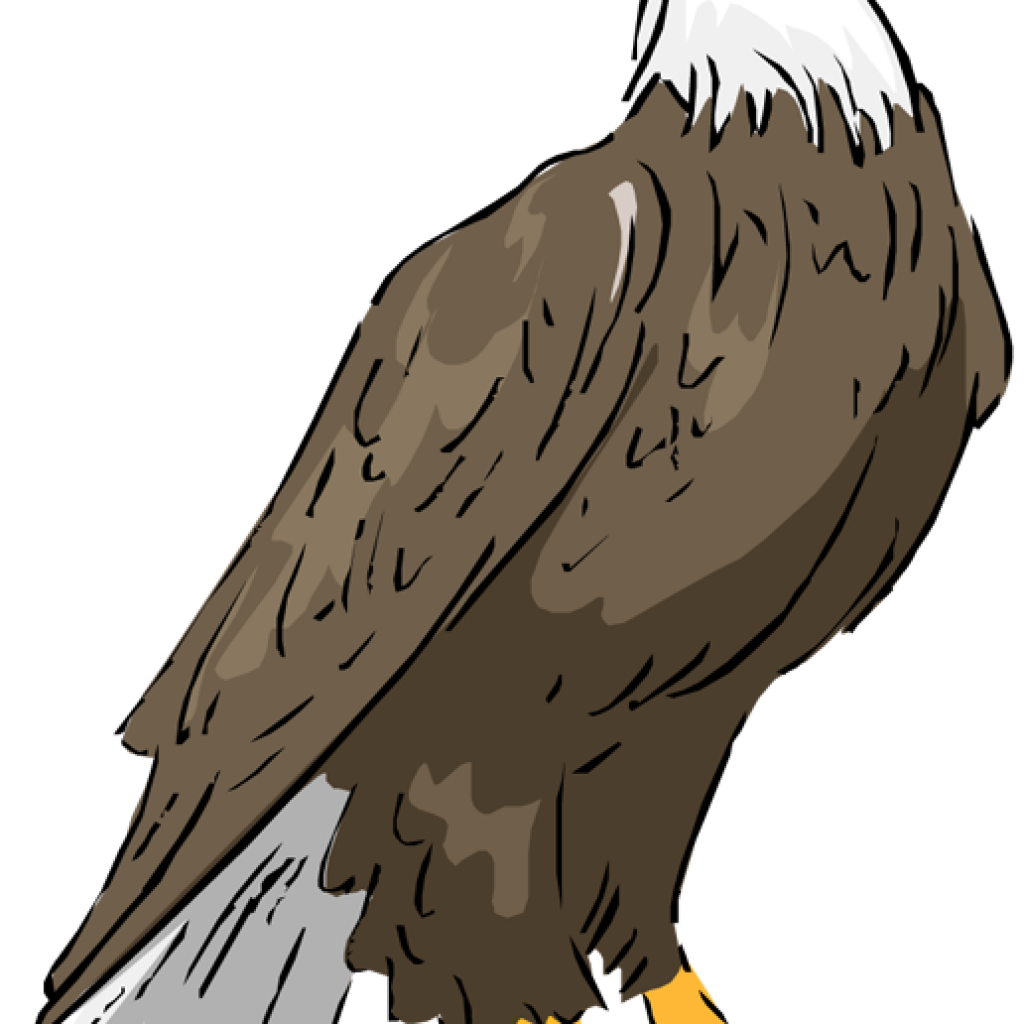 eagles clipart volleyball