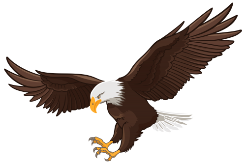 Clip art camping pinterest. Eagle vector png