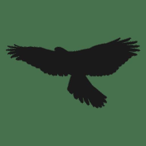 Eagle vector png. Silhouette transparent svg