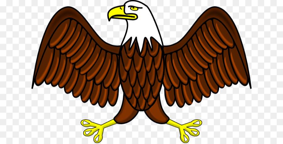 Bald eagle philippine free. Eagles clipart