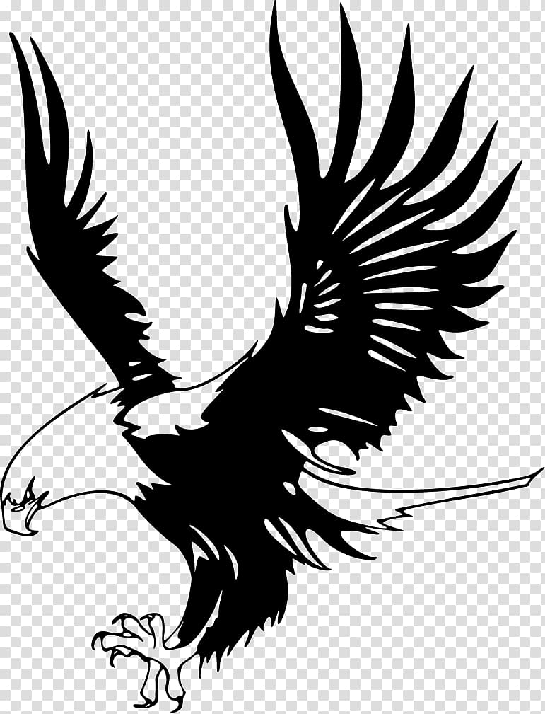 Eagles clipart bird african. Bald eagle golden transparent