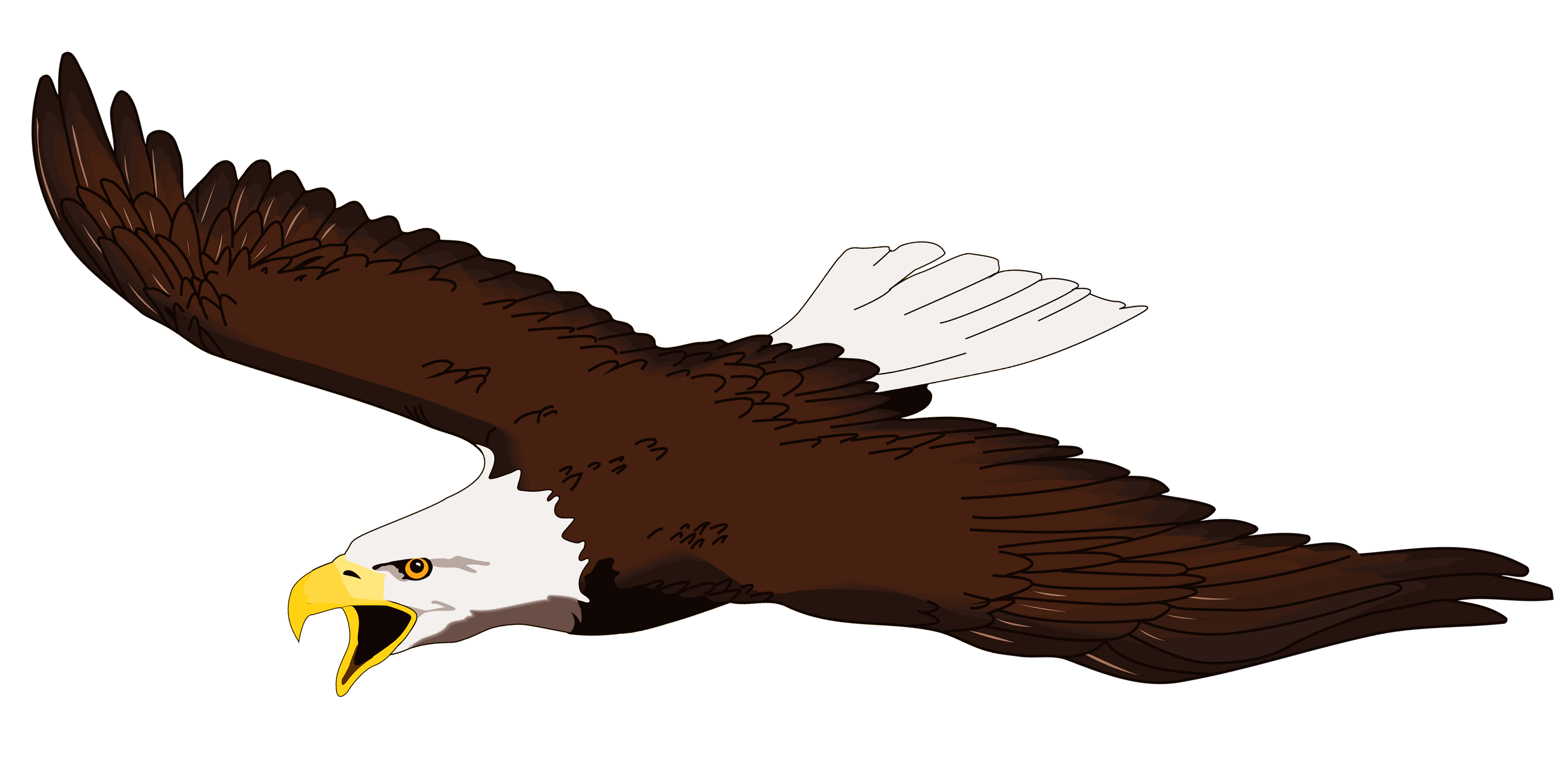 collection of high. Eagles clipart bold eagle