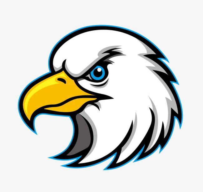 Head png bald birds. Eagles clipart bold eagle