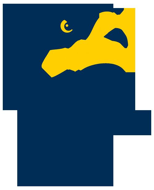 Free mascot cliparts download. Eagles clipart eagle head