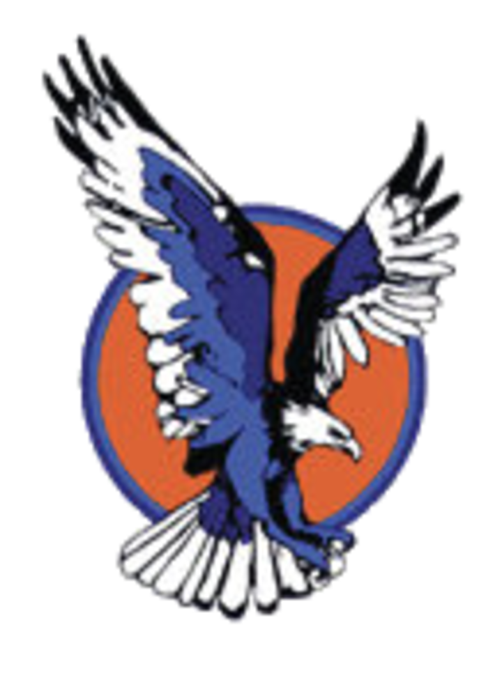 Eagles clipart eagle profile. The vienna scorestream logo