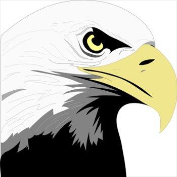 Free graphics images . Eagles clipart eagle profile