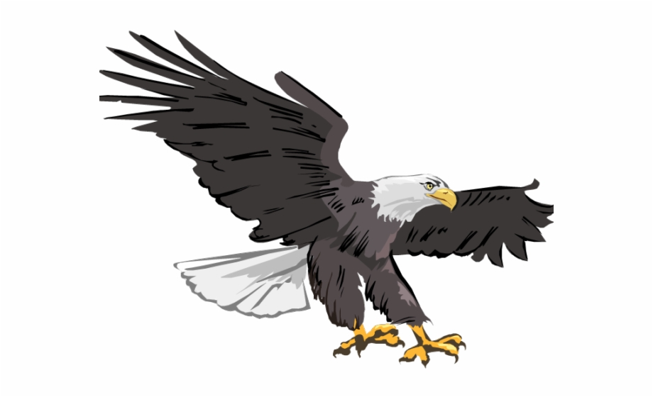 Transparent png free images. Eagles clipart military eagle