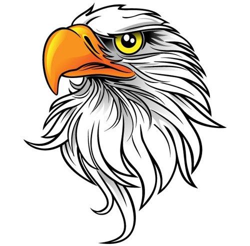Eagle clip art images. Eagles clipart sad