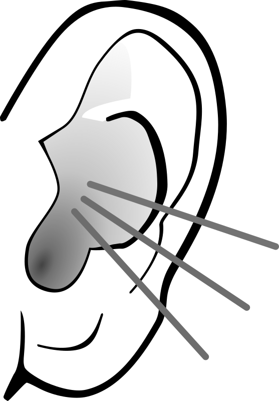collection of ear. Ears clipart black and white