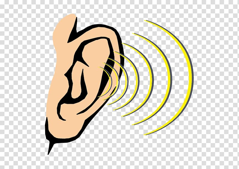 Ear clipart sense hearing. Transparent background png cliparts