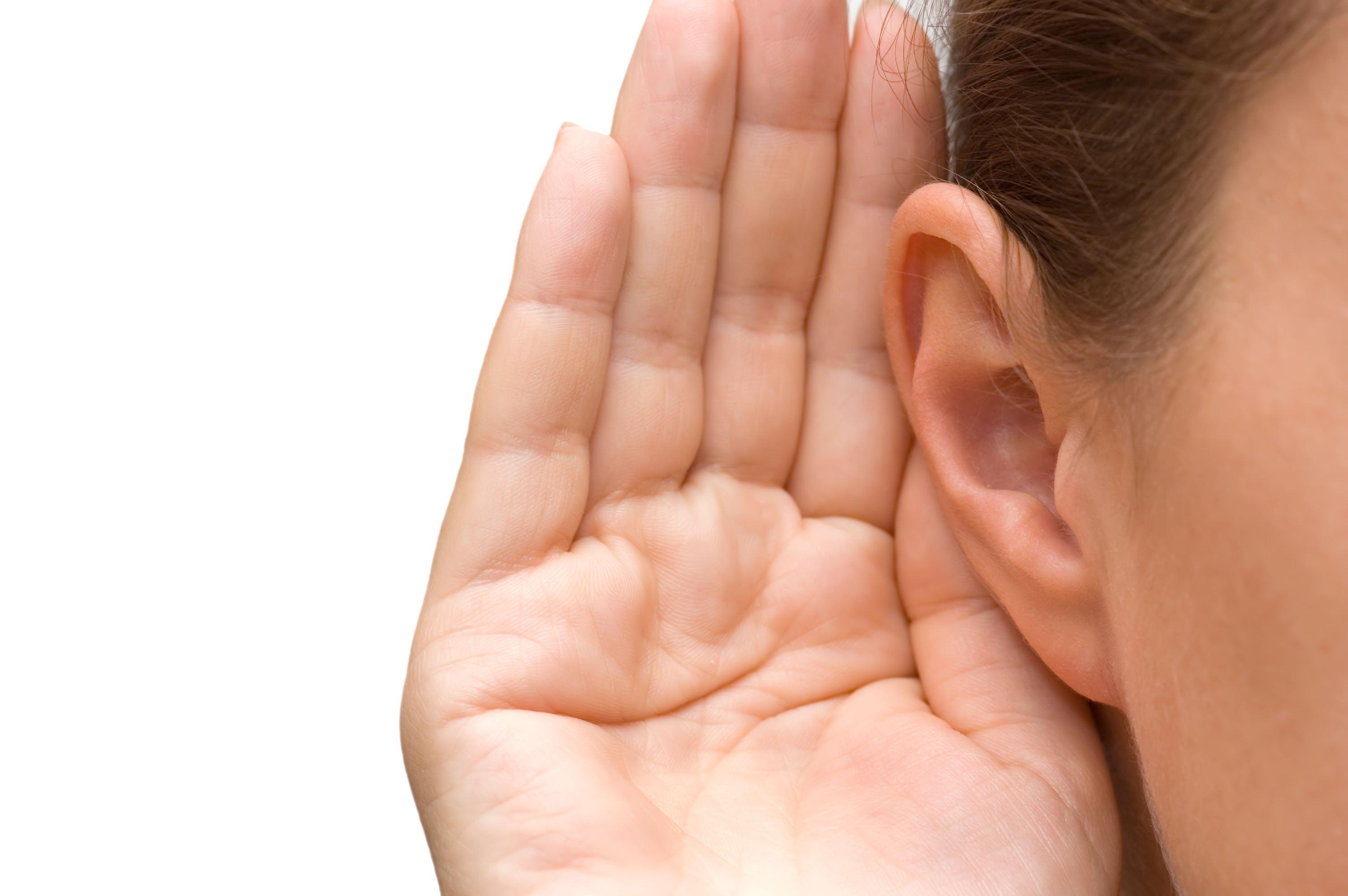 Two ears clip art. Whisper clipart in ear