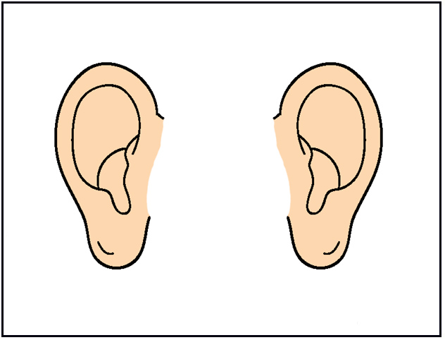 Ear clip art free. Ears clipart