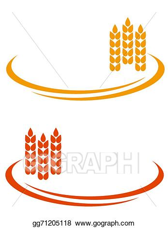 Vector art wheat with. Ears clipart line