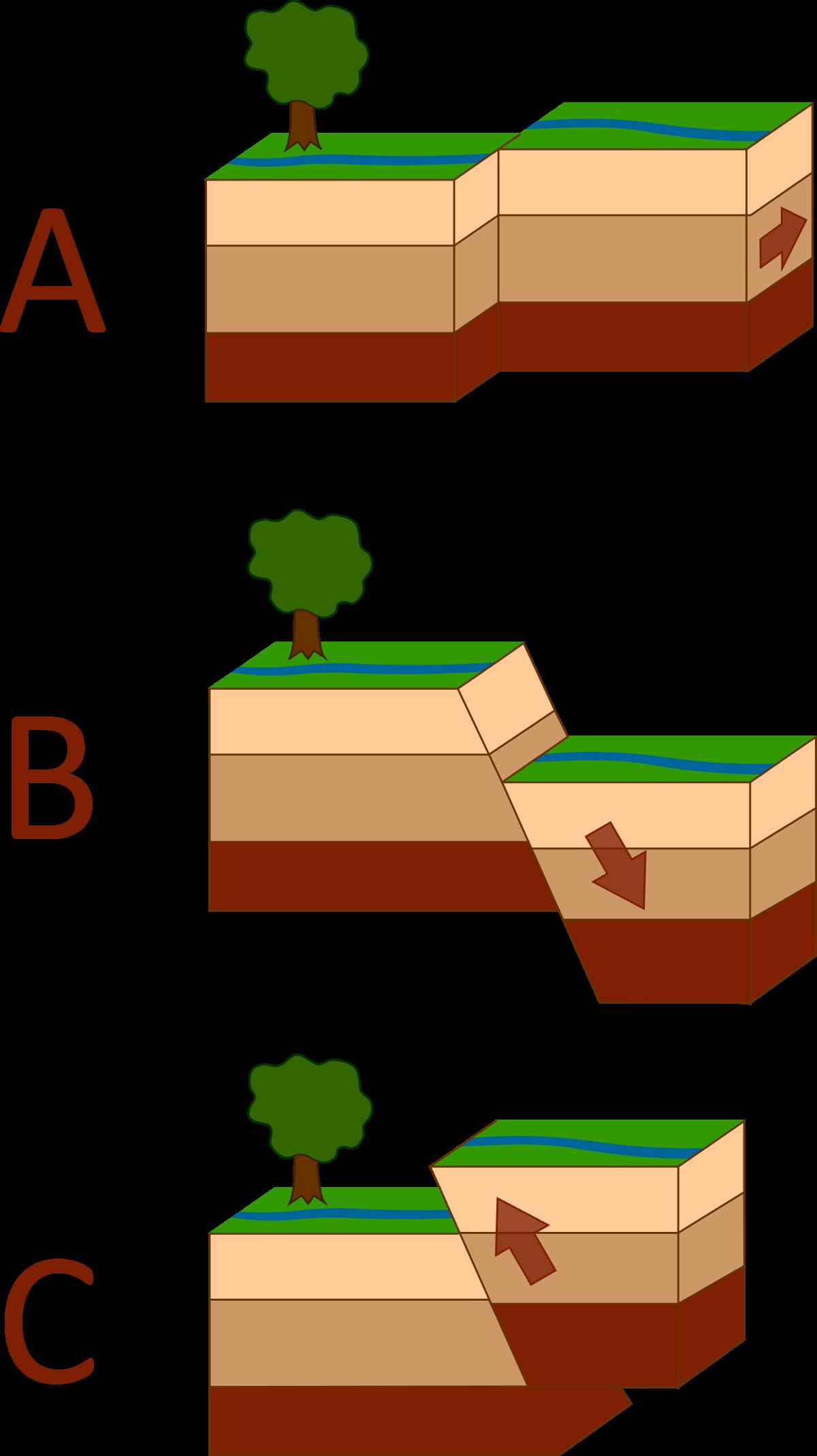 Seismology wiktionary . Earthquake clipart seismologist