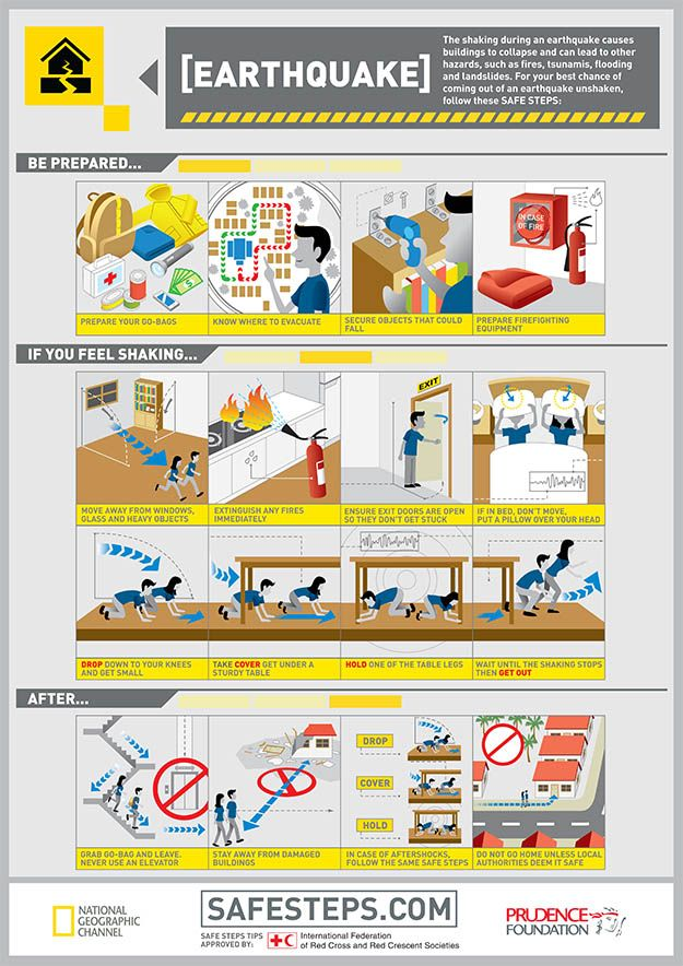 Survival smarts scenario infographic. Emergency clipart earthquake safety