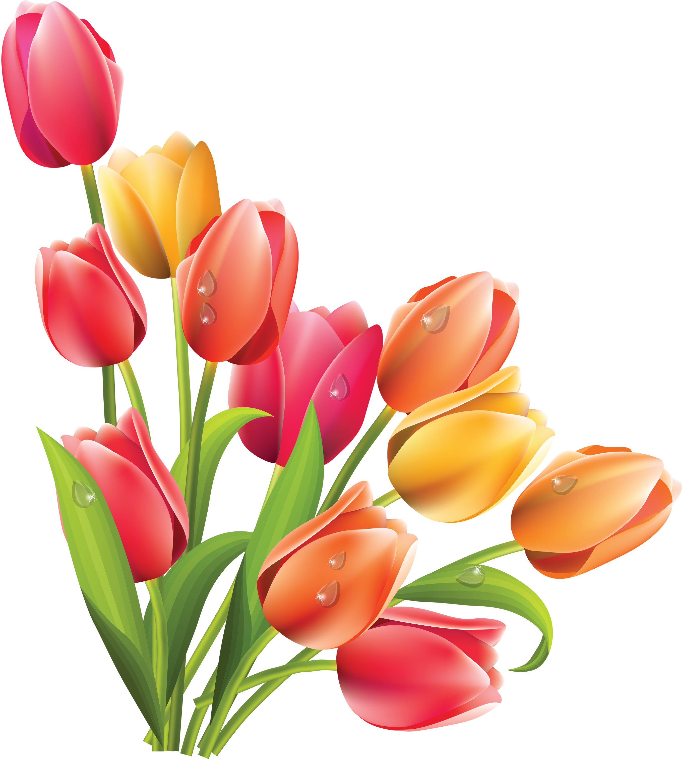 Easter clipart tulip. Bunny lily flower clip