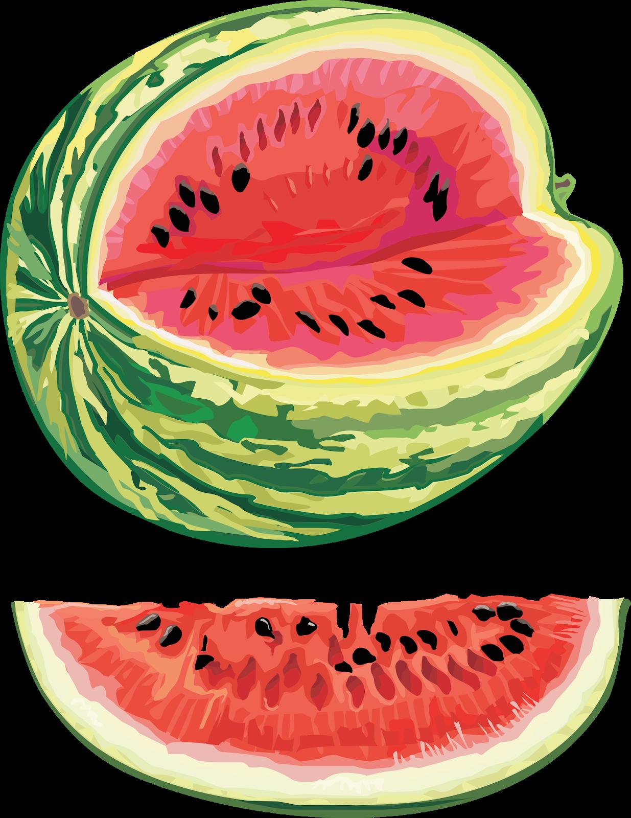 The multicolored diary april. Watermelon clipart green watermelon