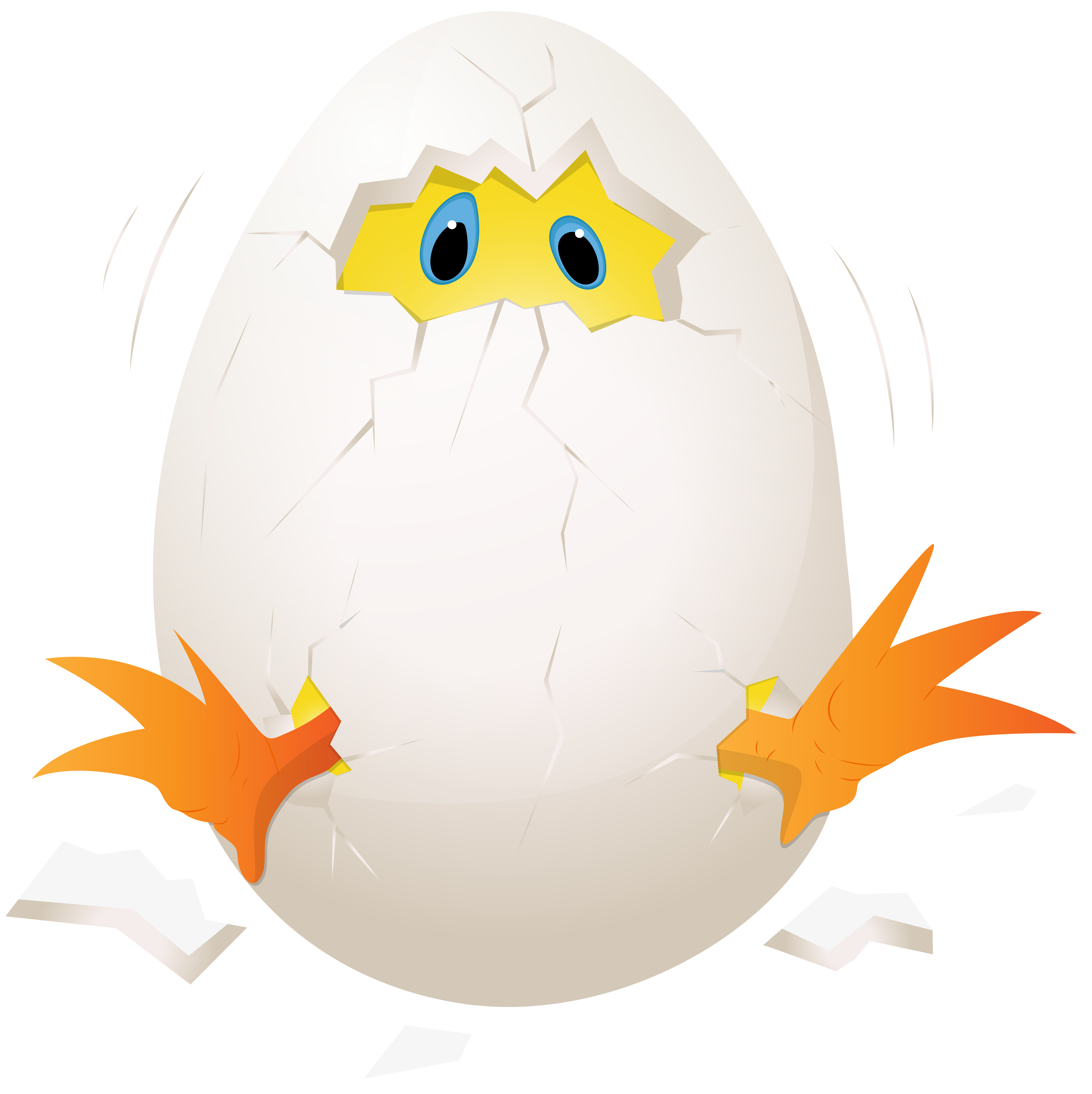 Easter chicken in png. Quail clipart quail egg