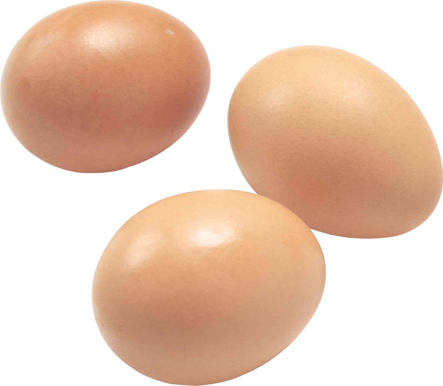 Egg clipart clear background. Eggs png image free