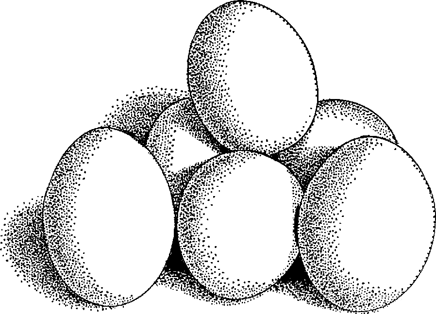 Free food clip art. Eggs clipart 3 egg