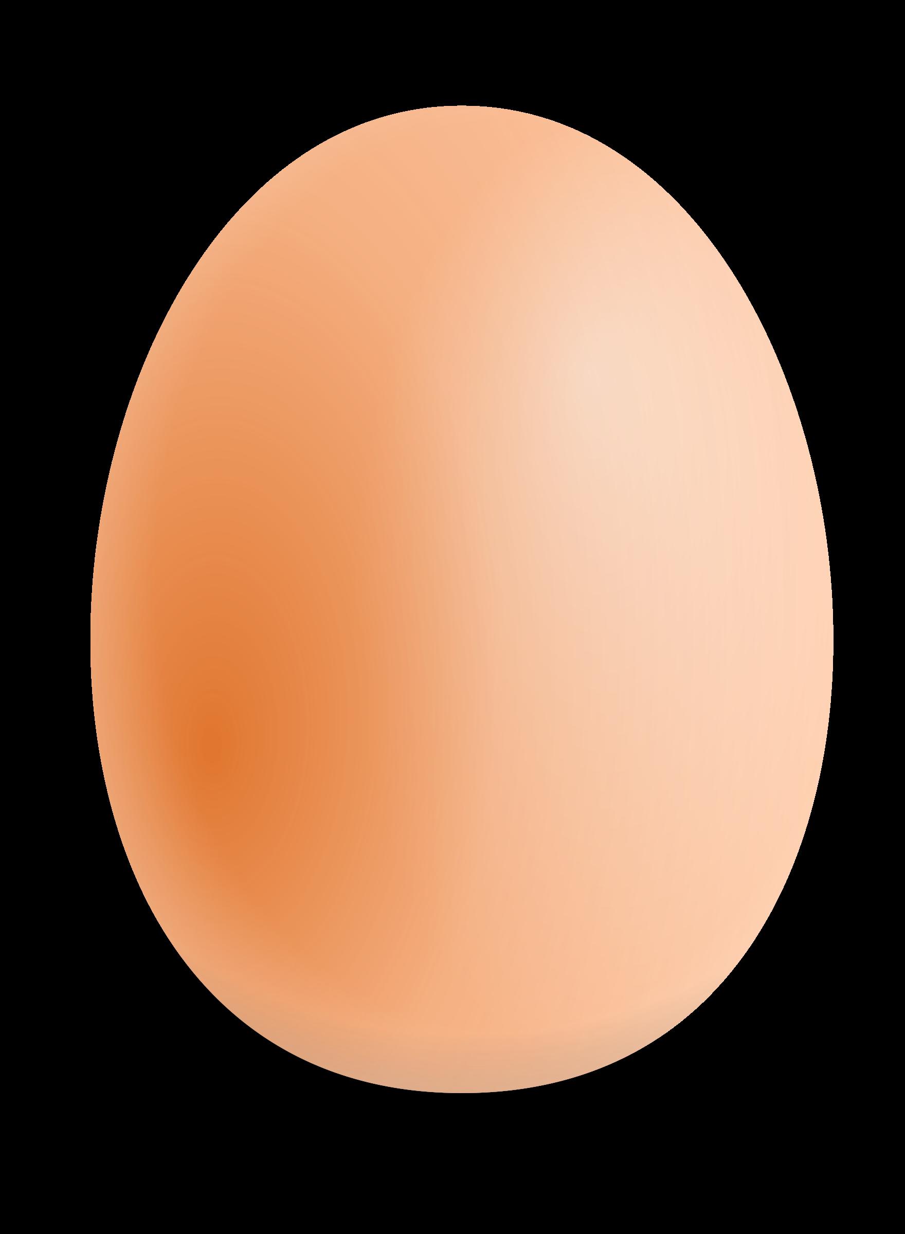 Eggs clipart bird egg. One isolated stock photo