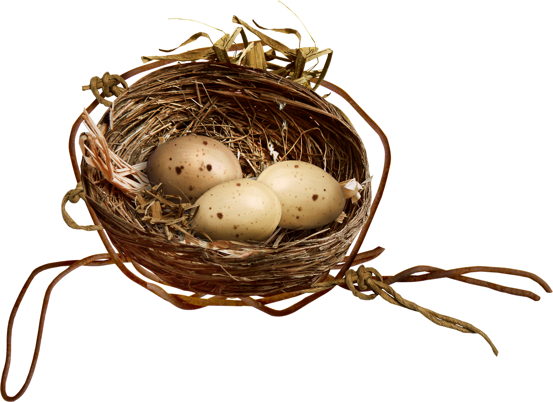 Egg clip art transprent. Nest clipart bird food