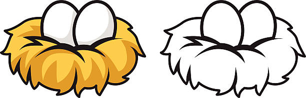 Nest clipart two egg. Bird in free download