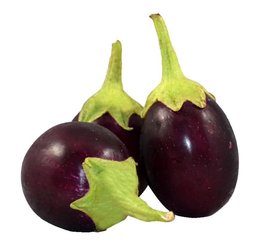 Fresh brinjal png image. Garden clipart eggplant