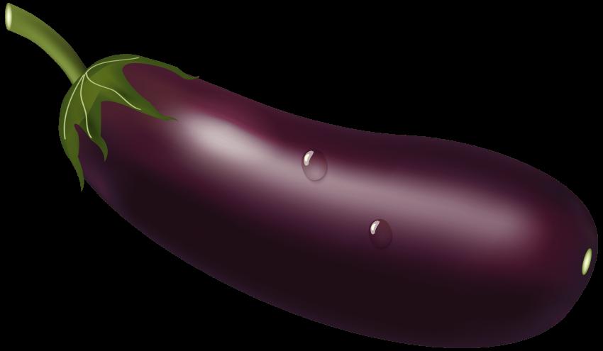 Purple clipart brinjal. Eggplant png free images