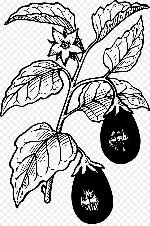 Black and white flower. Eggplant clipart leaf