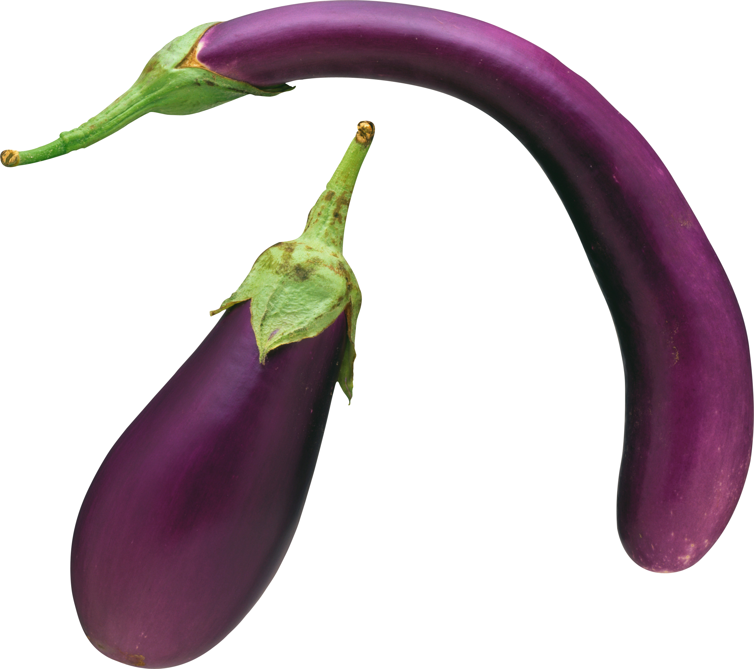 Png images free download. Eggplant clipart single vegetable