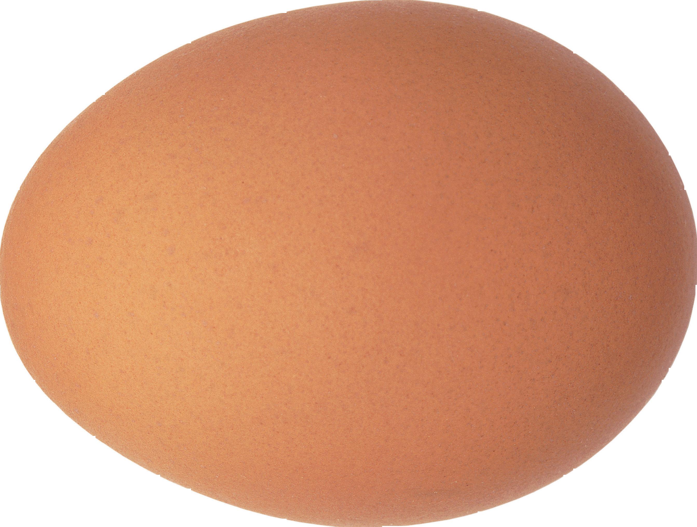 Fruit clipart egg. Ten isolated stock photo