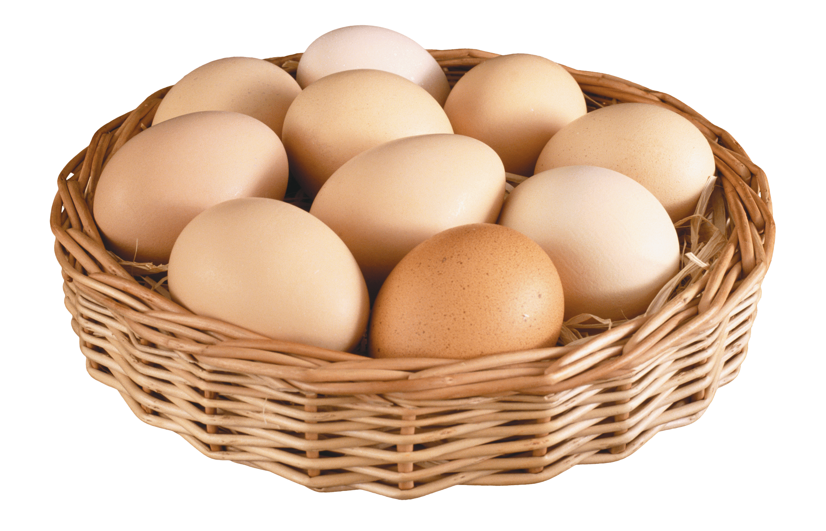 Basket transparent png stickpng. Eggs clipart nest
