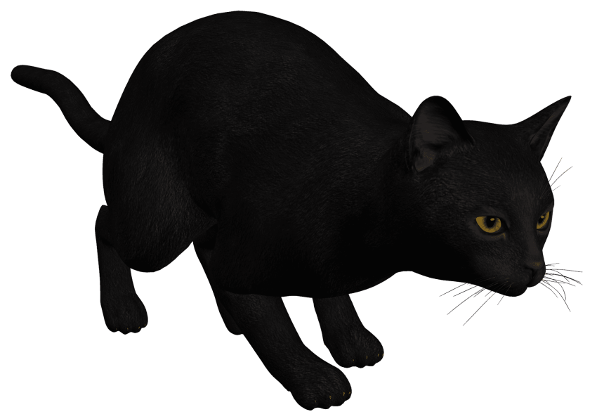 Black png free images. Egypt clipart cat