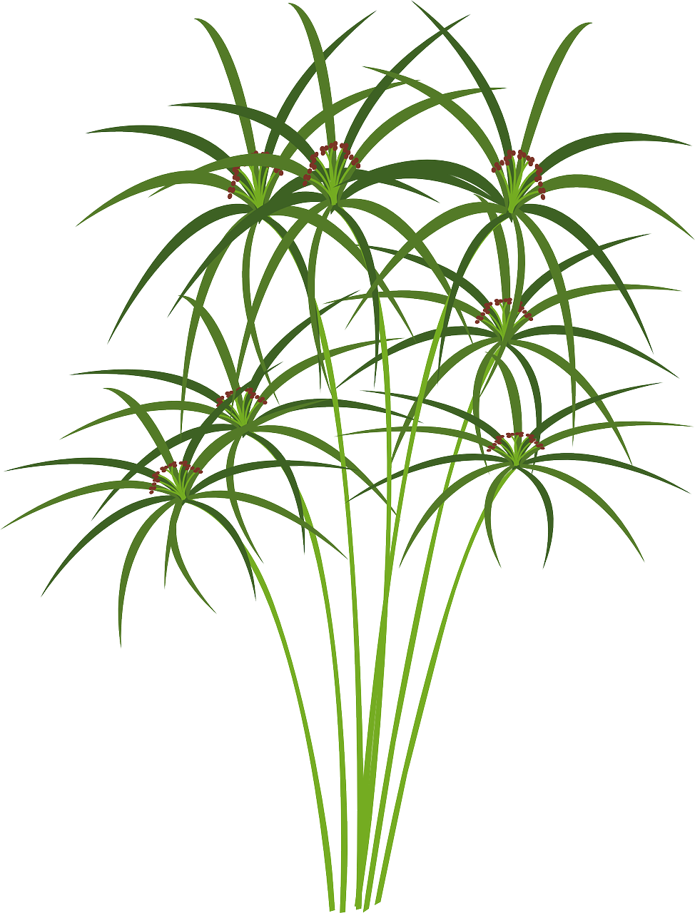 Redwood library and lab. Egyptian clipart flower